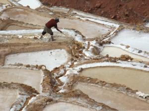 Salineras de Maras - Cusco - Perú