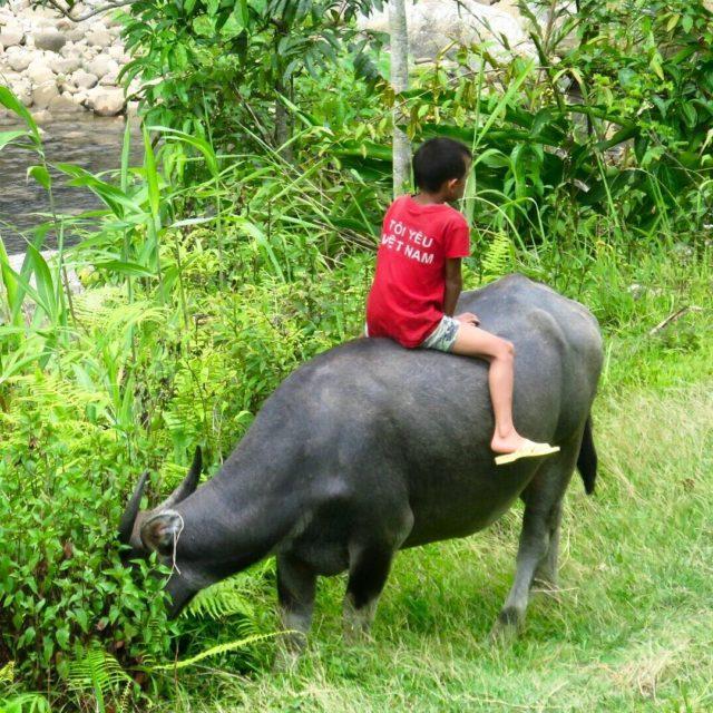 Da 174 En Vietnam normalmente son los nios los quehellip