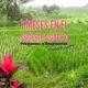Sudeste asiático parte 2
