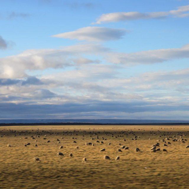 Y me enamor de los colores de la patagonia chilenahellip