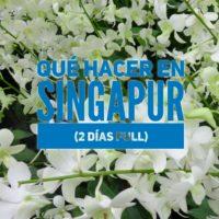 Qué hacer en Singapur bajo presupuesto